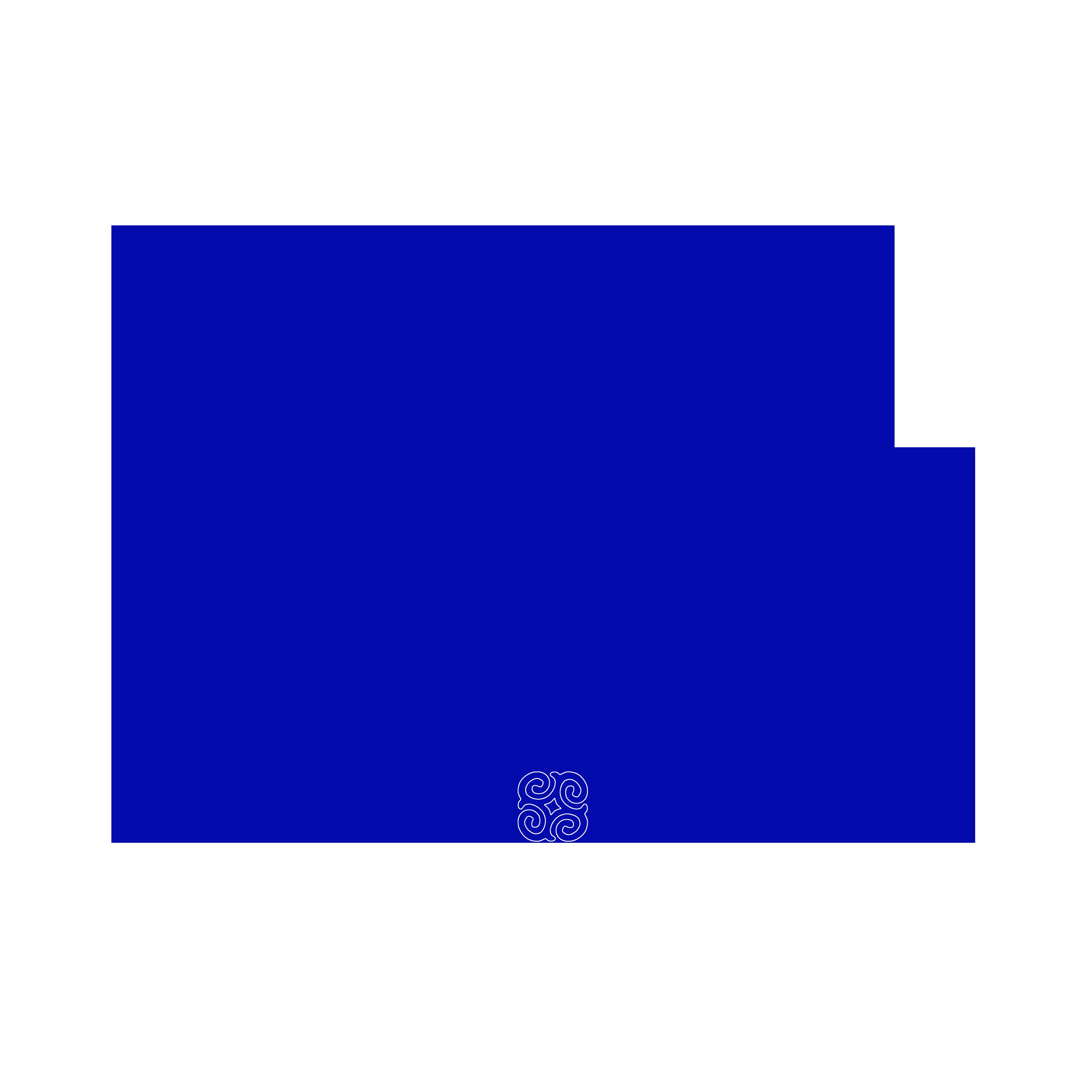 Улаанбаатар хивс ХК
